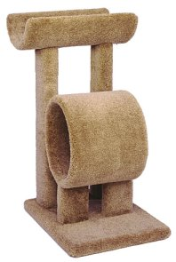 cat climbing tree with tunnel